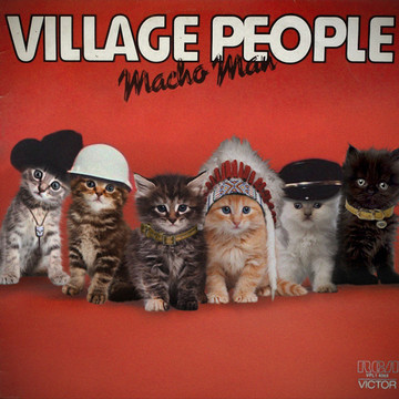 Kittens Grace the Covers of Classic Albums