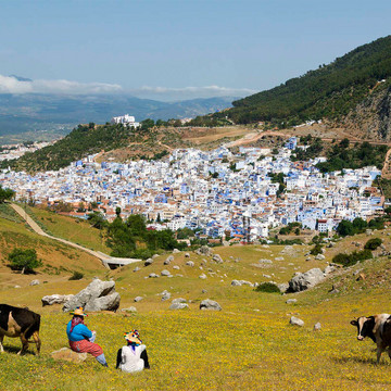 The One-Hue Town: Chefchaouen