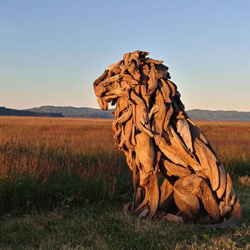 Knock on Wood: Sculptures Made from Driftwood