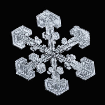 Yes, These Snowflakes are Totally Real